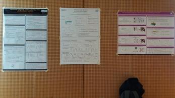 Posters at OPT 2016, NIPS workshop.
